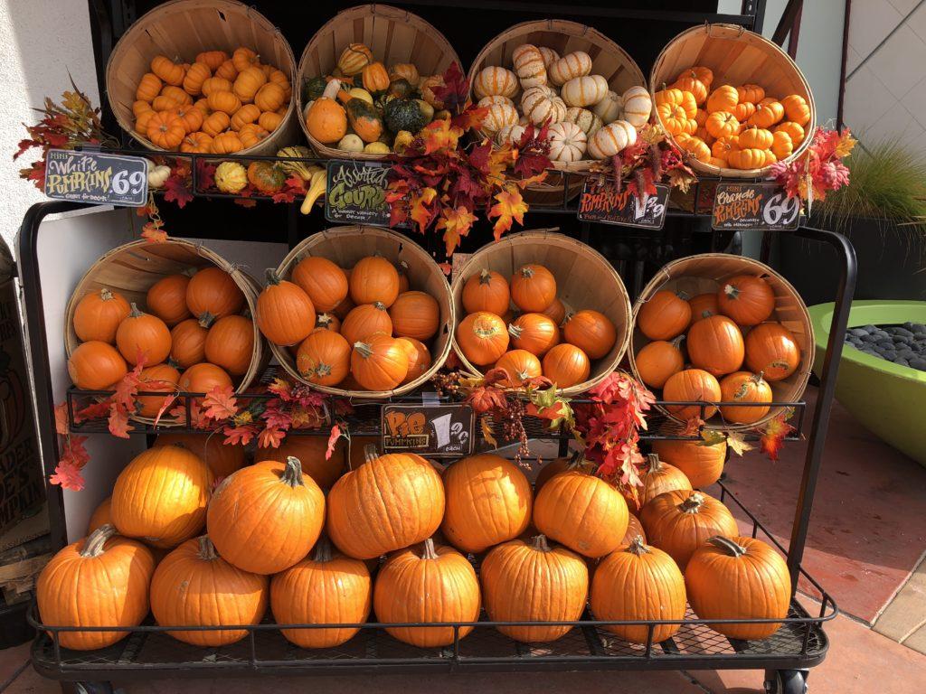 pumpkin display at Trader Joe's
